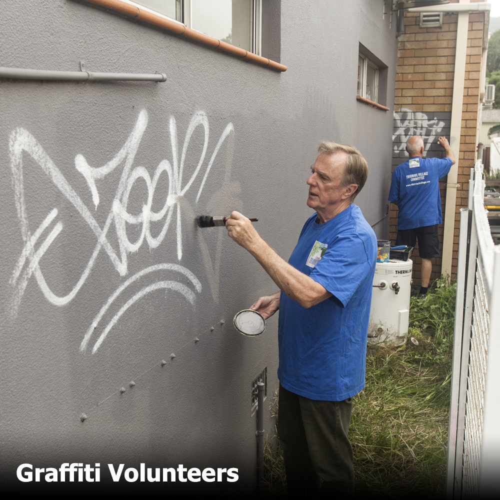 graffiti volunteers 01